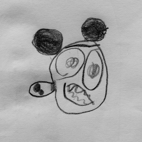 doctorcookies mickey mouse