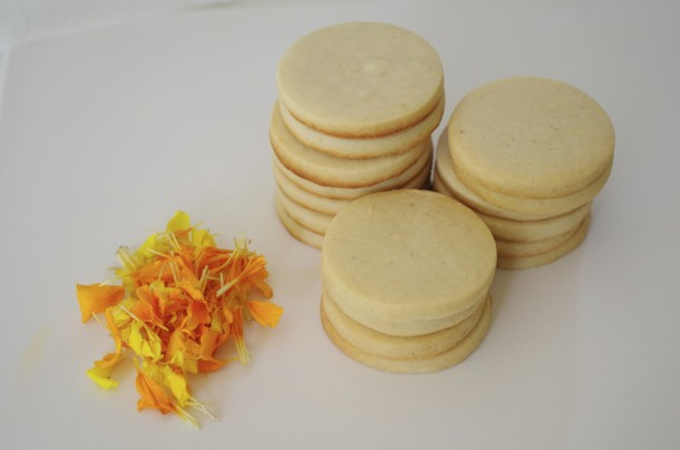 doctorcookies galletas flor natural (3)