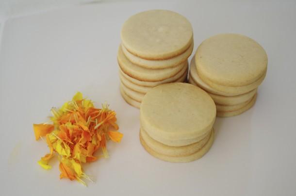 doctorcookies galletas flor natural (3)