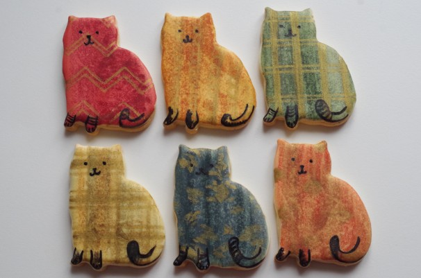doctorcookies gatos (9)