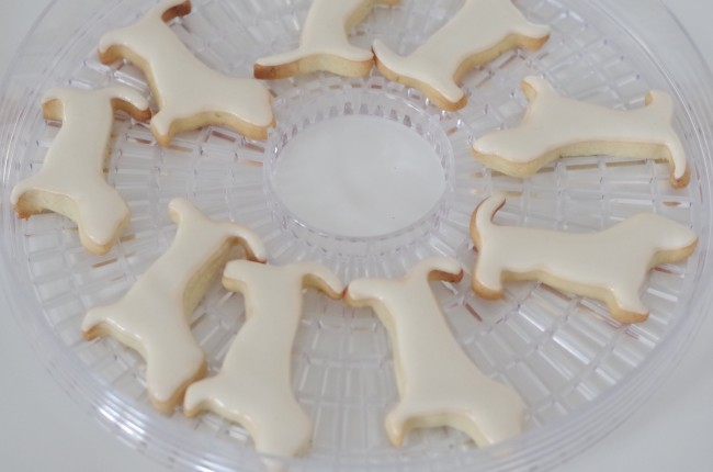 doctorcookies galleta decorada perros dog cookie (3)