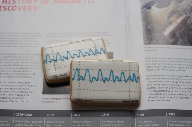 doctorcookies magnetic cookies (5)