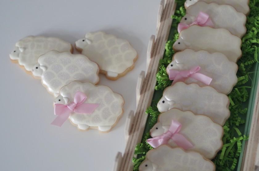 doctorcookies galletas primavera  (5)