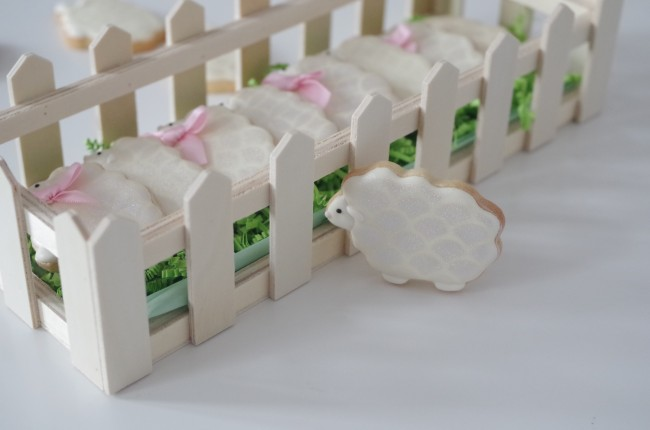 doctorcookies galletas primavera  (6)