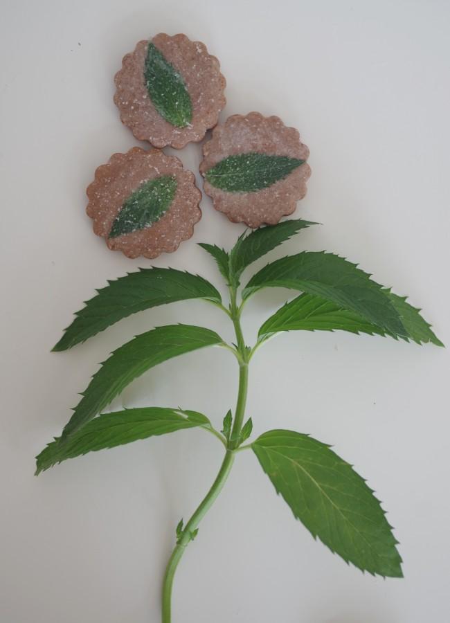 doctorcookies cómo petrificar flor y hoja comestible (21)