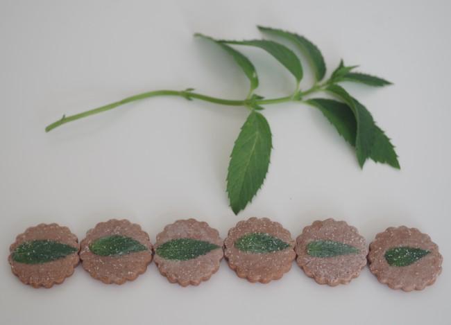 doctorcookies cómo petrificar flor y hoja comestible (22)