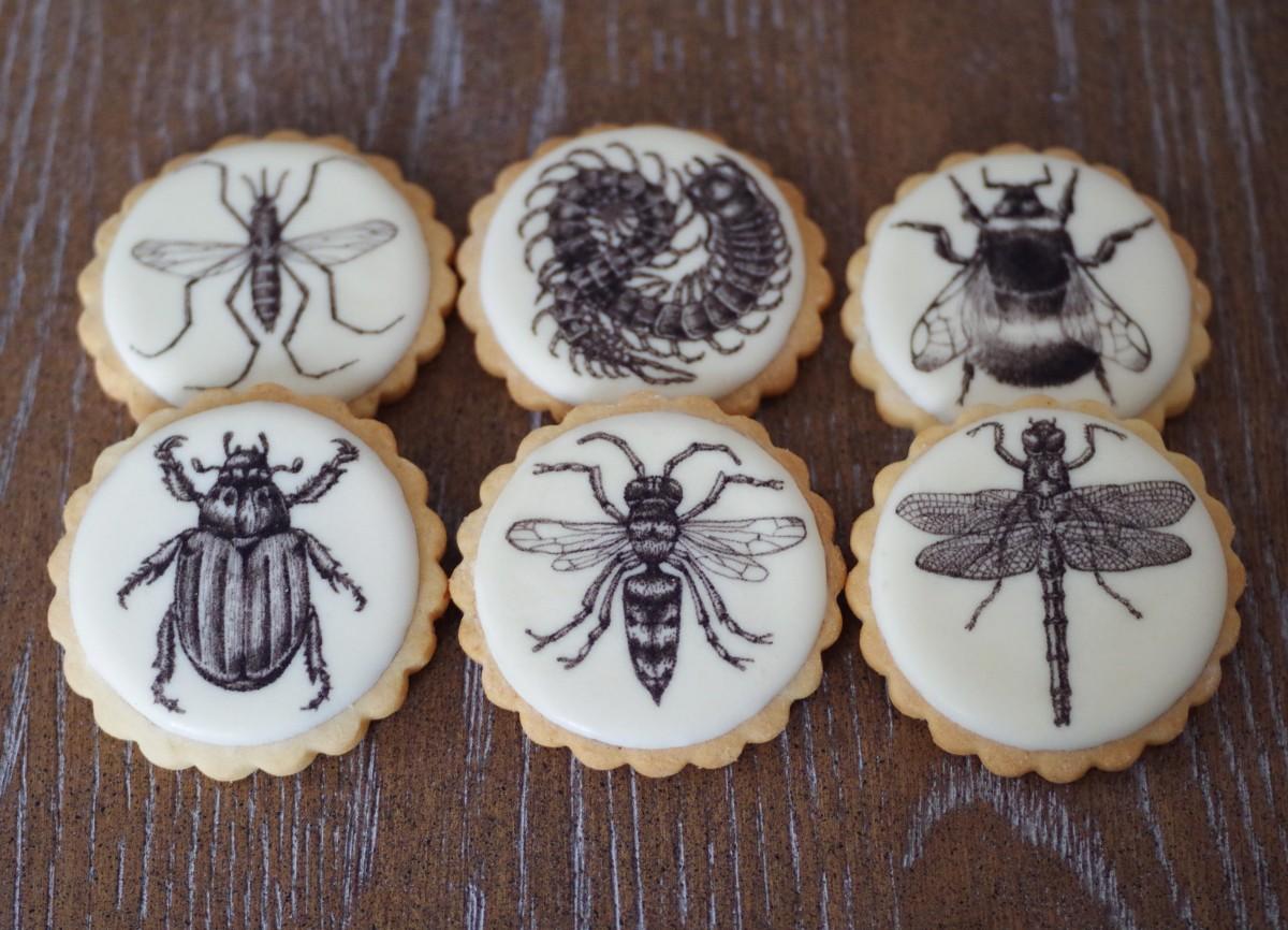 doctorcookies-galletas-decoradas-daniel-dors-16