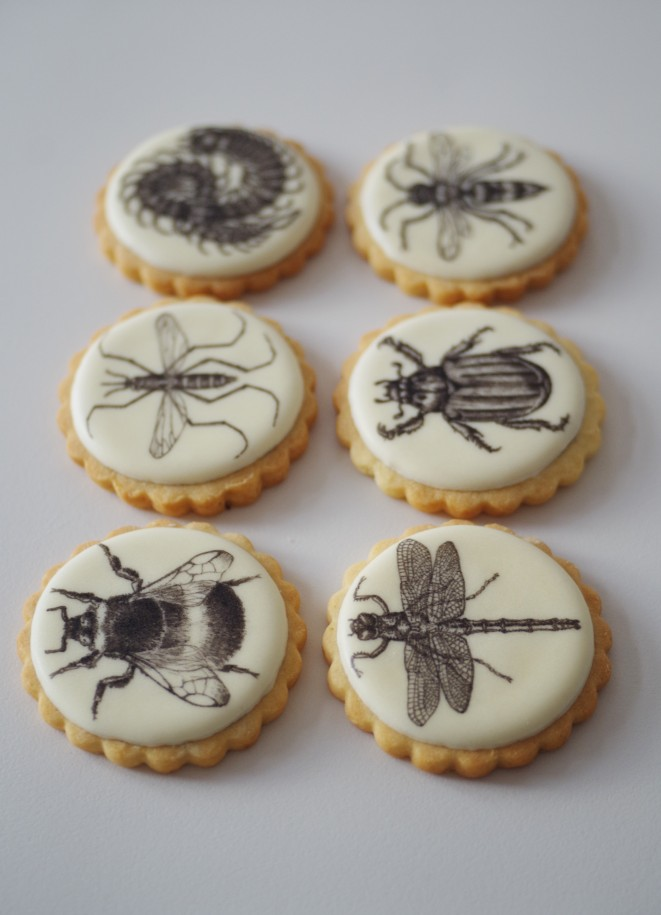 doctorcookies galletas decoradas daniel d'ors (7).JPG