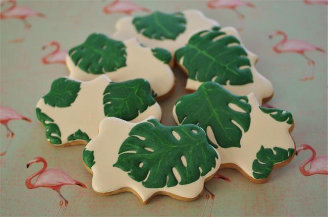 doctorcookies monstera deliciosa (6)