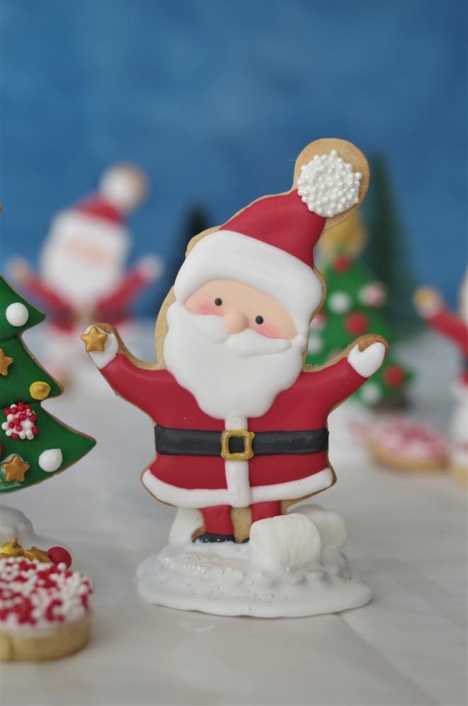 doctorcookies christmas cookies (5)